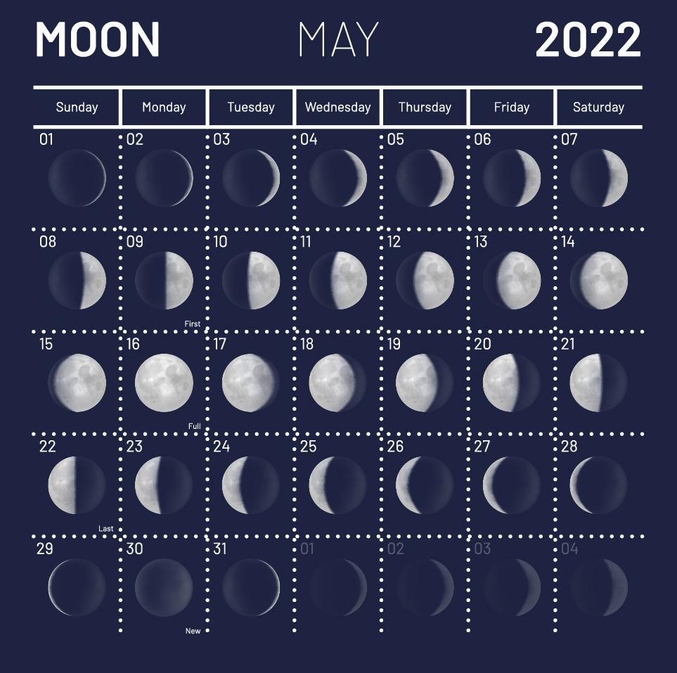 Лунный календарь садоводов и огородников на май 2022