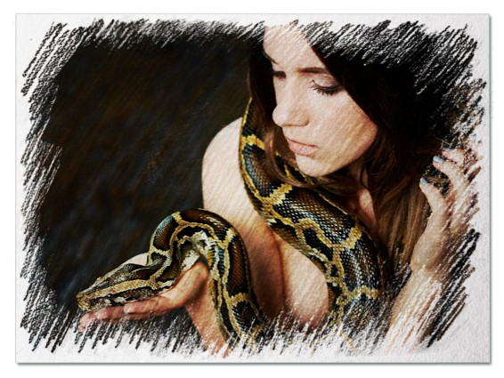 Змея женщине во сне